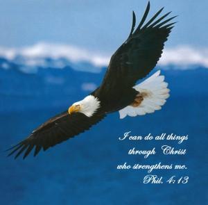 EagleSoaringPhil413
