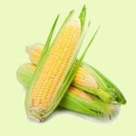 CornEars